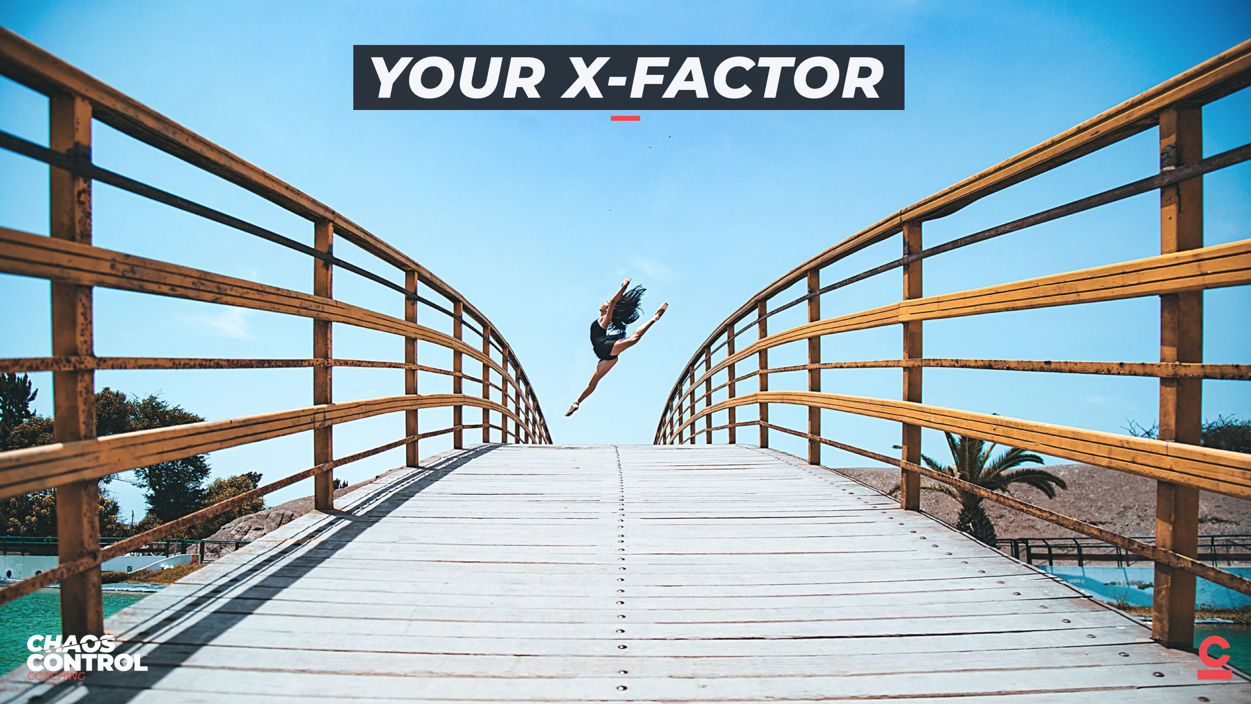 Your X-Factor: Turning Sh*t Into Shingles