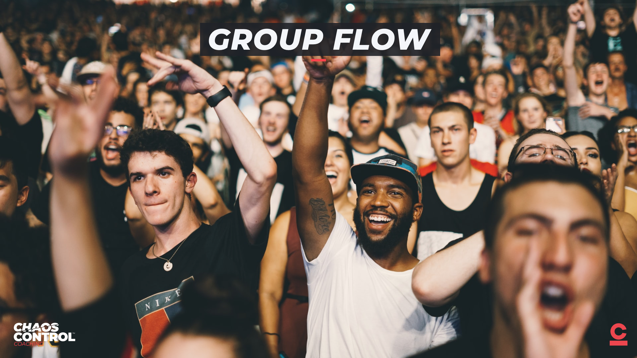 Group Flow: High-Flow Teams & Tribes