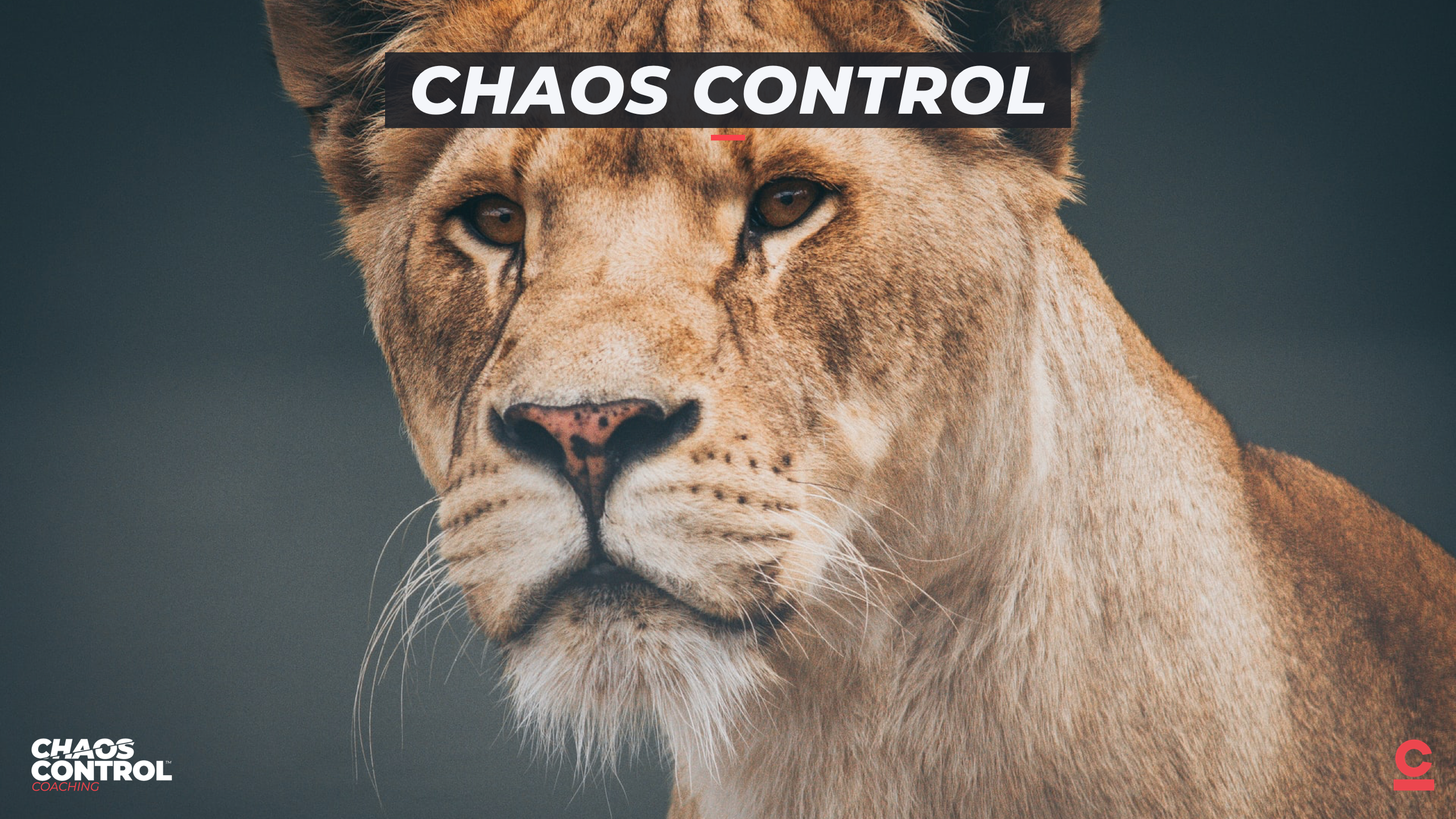Chaos Control: Recap, Review & Results